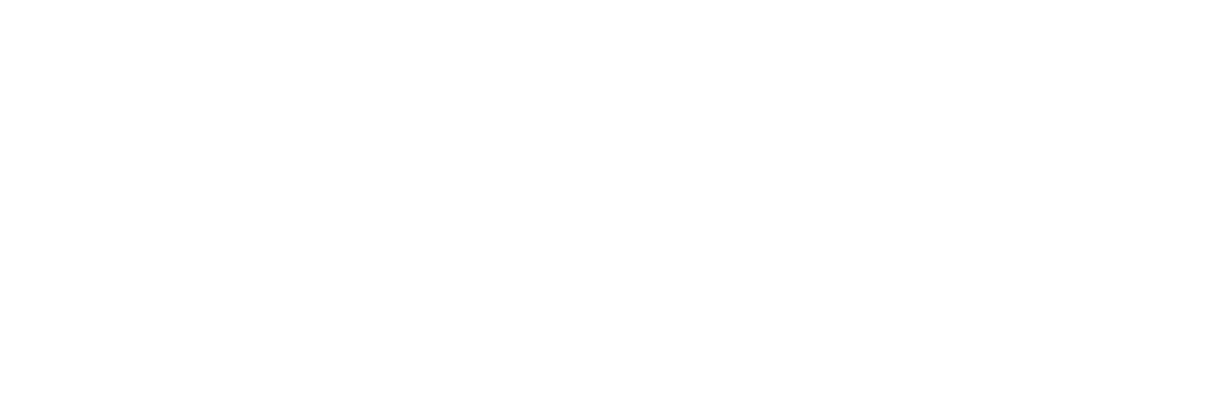 Apis Food Solution